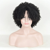 Andao Short Big Afro Kinky Marley Braids Curly Hair Dreadlocks Wig African American Celebrity Wigs Black