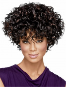 LongOu Afro wig Small explosion short curly wigs