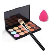 Toraway Pro 15 Colours Makeup Concealer Contour Palette +1 PC Makeup Brush + 1 PC Sponge Puff