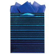 The Gift Wrap Company Carribean Ombre Effect Gift Bag