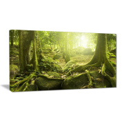 "Designart PT6998-100cm - 80cm Green Forest with Sun Landscape Photo"" Canvas Print, Green, 100cm x 80cm"