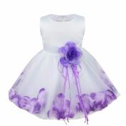 iEFiEL Babys Infants Girls Floating Petals Wedding Birthday Party Flower Dress