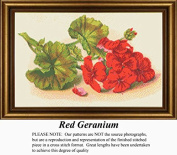 Red Geranium, Vintage Counted Cross Stitch Pattern