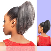 DS002 (Foxy Silver) - Synthetic Ponytail in 51