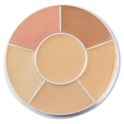 JUVITUS PRO Correct and Conceal Wheel - Warm Neutral