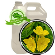 Evening Primrose Oil - 3.8l (3790ml) - Wildcrafted, Cold-pressed