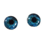 8mm Glass Eyes in Deep Blue Pair of Human Crafting Supply Flatback Cabochons for Doll Taxidermy or Jewellery Making