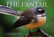 The Fantail