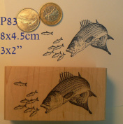 P83 Fish chasing little fish rubber stamp