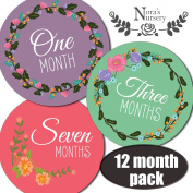 SALE! Baby Girl Monthly Stickers - Great Registry Keepsake for Babies, Baby Girl Shower Gift Idea or Milestone Photo Prop - Easy to Peel, Stick, Shoot and Remove from Clothing and Onesies