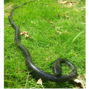 Rubber Lifelike Snakes Scary Gag Gift Incredible Creatures Chain Snakes 130cm Rain Forest Snake Toys Wild Life Snakes