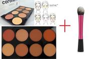 LyDia® Bronzer/Kabuki/Buffer/Contour Makeup Brush + Technic ColourFix Bronze Palette