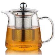 Perfect Clear Glass Teapot with Stainless Steel Infuser & Lid, Pyrex Glass Teapots Stovetop Safe 650ml