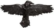 Women's Alchemy of England Black Raven Hair Slide