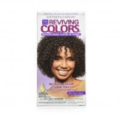 Dark and Lovely Reviving Colours, 395 Natural Black, 1 ea