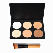 OULII 6 Colours Cosmetic Cream Contour Makeup Concealer Palette with Powder Brush