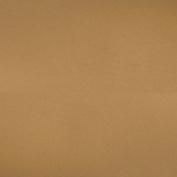 Bazzill Classic Cardstock 30cm x 30cm -Dark Kraft