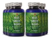 Blue algae supplement - BLUE GREEN ALGAE - prevent candida overgrowth
