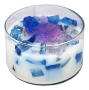 Primal Elements - Primal Delights Colour Bowl Candle Seashells & Starfish