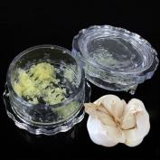 Kasstino Garlic Ginger Grinder Mincer Press Peeler Crusher Twist Squeezer Kitchen Tool