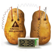 Kasstino Potato Clock Novel Green Science Project Experiment Kit Kids Lab Home School Toy
