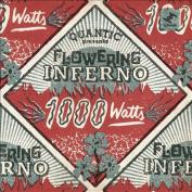 1000 Watts *