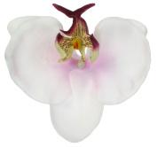 Phalaen (Phalaenopsis) Orchid Foam Flower Black Alligator Hair Clip, 6.1cm Long (Clip Only), White-Lavender