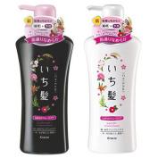 Ichikami Smooth and Sleek (NEW!) Shampoo & conditioner Set