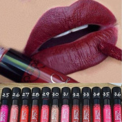 Binmer(TM) 12 PCS Waterproof Lip Gloss Matte Velvet Long Lasting Lipstick Pencil Cosmetic