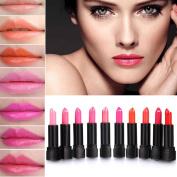 Eshion 10 Colours Makeup Lipstick Lip Balm Pencil Beauty Long Lasting Lip Stick Set Kit