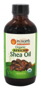 Inesscents Aromatic Botanicals - Organic African Shea Oil - 120ml
