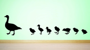 Design with Vinyl RAD 591 3 Duck with Baby Ducklings Family In Line Silhouette Vinyl Wall Decal, Black, 50cm x 100cm