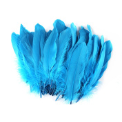 Celine lin 100PCS Dyed Home Decor Goose Feather For Art,Home Party or Wedding 15cm - 20cm ,Lake blue