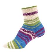 Mary Maxim Footloose Sock Yarn - Multi