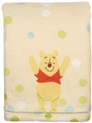 Winnie The Pooh Printed Velboa Baby Blanket