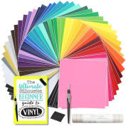Silhouette Cameo Vinyl Starter Kit with Oracal 651 Glossy and Oracal 631 Matte, Guide, Transfer Paper and Tools
