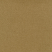 Worldwin Kraft Cardstock, 30cm by 30cm , 25-Pack