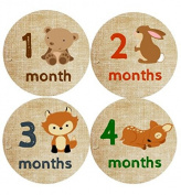 Monthly Baby Stickers Woodland Animals Baby Month Stickers Woodland Critters Milestone Stickers