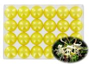 Box of 24 oil bath pearls - pearly honeysuckle