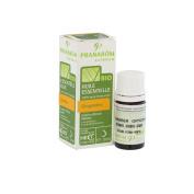 Pranarôm Bio Essential Oil Ginger 5ml