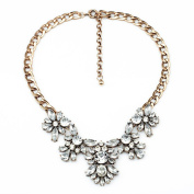 ZLYC Women's Fashion Crystal Leaves Rhinestone Statement Bib Necklace