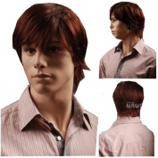 MELADY®(Free Cap) Fashion Casual Red-Brown Fluffy Short Straight Synthetic Men Office Hair Replacement Wigs