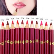 EFINNY 12pcs Colours Lasting Waterproof Matte Lipstick Lip Liner Pencil Pen Makeup Set