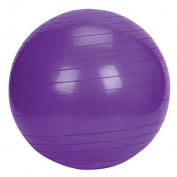 Miracle Products Birth/Exercise Ball