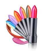 BESTIM INCUK 6-Colour Sexy Changing Two-Colour Lipstick Lip Gloss Makeup Beauty
