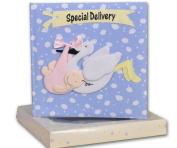 Baby Boy Record Book & Keepsake Box - Special Delivery