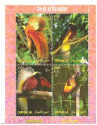 Somilia Birds of Paradise Souvenir stamp sheet, each stamp is 2500 So.Sh. - 4 stamps / Somalia / 2004