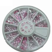 Elegant 12 Shape Pink Colours Studs Stones