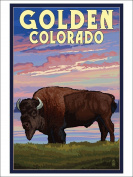 Golden, Colorado - Bison and Sunset