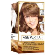 Excellence Colour Age Perfect Permanent Colour 5.03, Warm Golden Brown